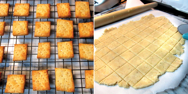 nom nom cat: Parmesan Thyme Crackers